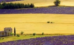 1383484032_provence-style-19