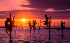 sri_lanka_stilt_fishermen_900