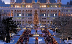 Christmas-Market-in-Vienna