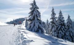 ski_area_1