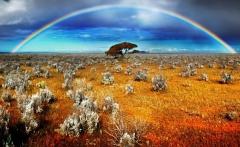 nature-desert_00417054