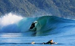 new-zealand-surfing-2000x1462-1200x480