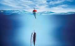 3d-fishing-hd-wallpaper-full-free