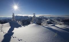 winterlandschaft-kaiserwinkl