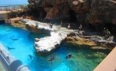 Crete-Aquaworld-Aquarium