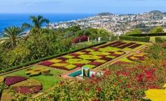 Madeira_TropicalGardens_Portugal_152264465