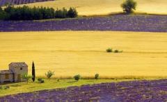 1383484032_provence-style-19