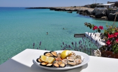 Shellfish-seafood-Puglia-Italy