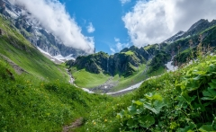 Streams-from-the-tops-(Switzerland)