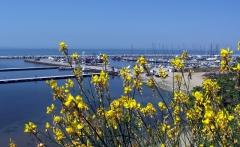 Thessaloniki08