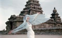 india-lep-04finalmore-blue_main_image