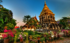 thaicult